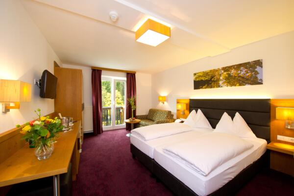modern Double room in the Sporthotel